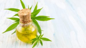 CBD Oil with Marijuana Plant