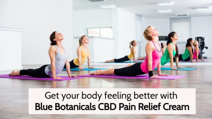 BB CBD Pain Relief Cream