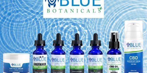 Unwind This Summer Blue Botanicals