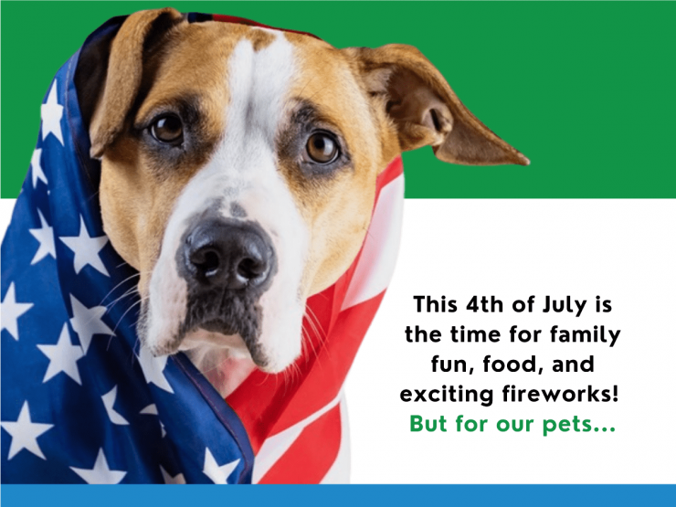4th of july dog calm cbd